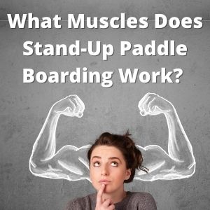 What Muscles Does Stand-Up Paddle Boarding Work Stand Up Paddleboard Questions And Answers